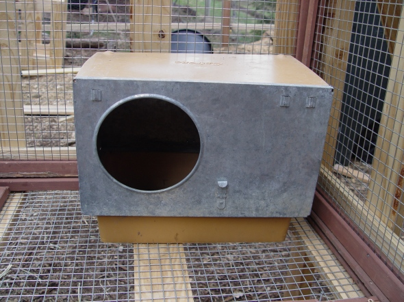 rabbit nesting box