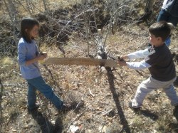 Children using a two man crosscut saw from harbor freight